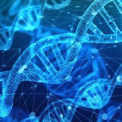 Wo bleibt da der Datenschutz? FBI darf Datenbanken von Family Tree DNA nutzen 1