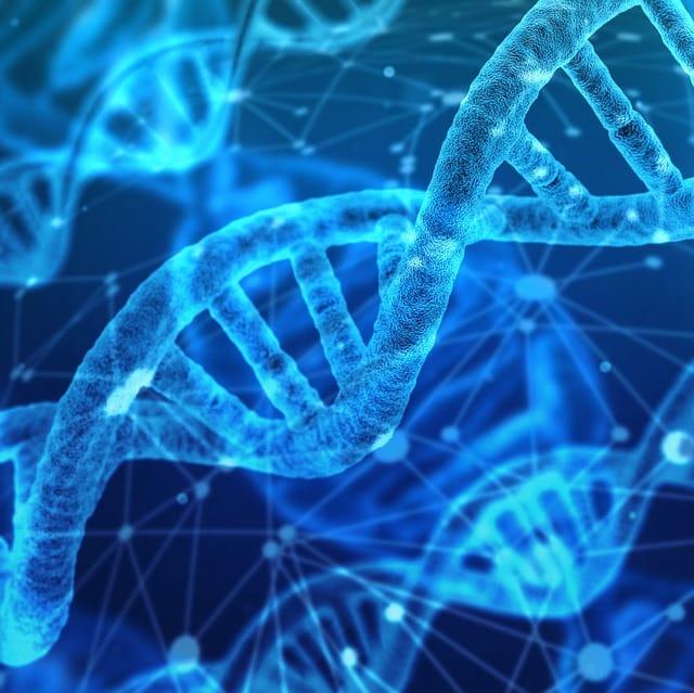 Wo bleibt da der Datenschutz? FBI darf Datenbanken von Family Tree DNA nutzen
